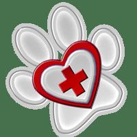 Поездки в ветеринарные центры и клиники с ShowLeader