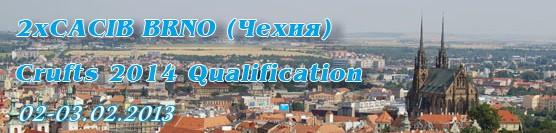 http://showleader.ru/wp-content/uploads/2012/11/brno-13.jpg