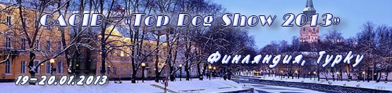 http://showleader.ru/wp-content/uploads/2012/11/turku2013.jpg