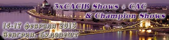 http://showleader.ru/wp-content/uploads/2012/12/budapest02-13.jpg