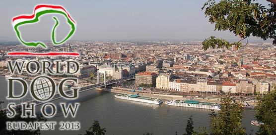 ShowLeader (Шоулидер)-World Dog Show 2013 Венгрия, Будапешт