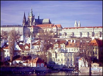 27-28 апреля Сербия, Крагуевац — Наталинцы  / ShowLeader - поездки с собаками на выставки