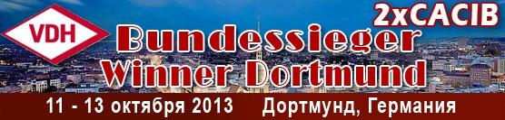 http://showleader.ru/wp-content/uploads/2013/06/dortmund2013.jpg