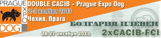 http://showleader.ru/wp-content/uploads/2013/08/pleven-pragua2013.jpg