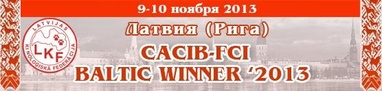 Showleader-поездки с собаками на выставки по России, Европе на микроавтобусе Banner-riga20131