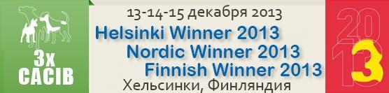 Showleader-поездки с собаками на выставки по России, Европе на микроавтобусе Helsinki2013