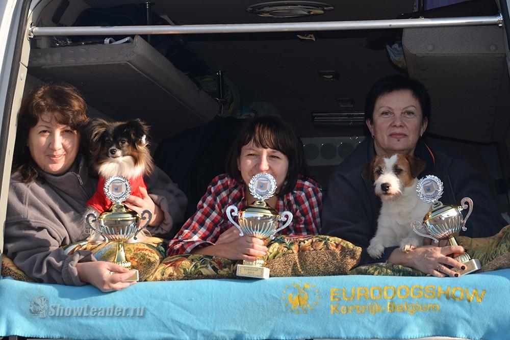 Бельгия, Кортрейк 2xCACIB 50th EURODOGSHOW/ ShowLeader (Шоулидер) - поездки с собаками на выставки
