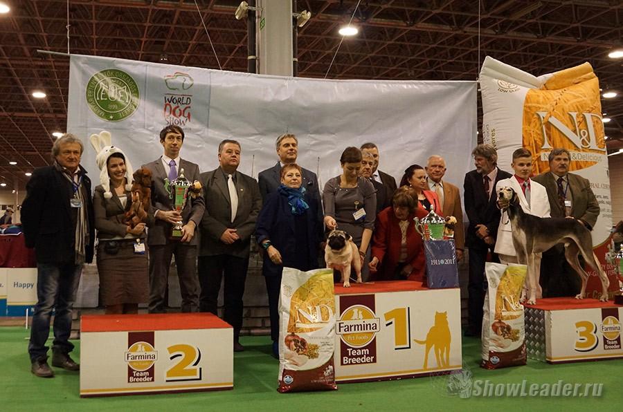 13-16.02.2014 4xCACIB FEHOVA WINTERDOGSHOW Будапешт (Венгрия) / ShowLeader (Шоулидер) - поездки на выставки собак