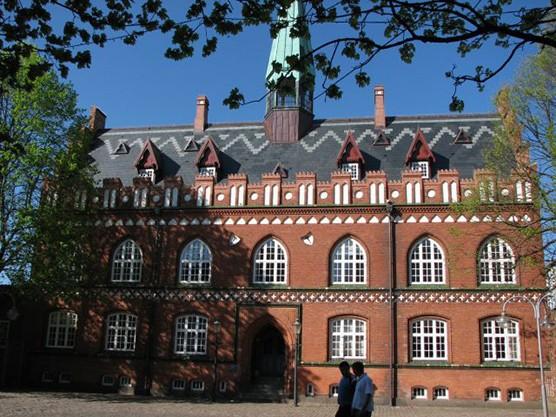 2xCACIB Danish Winner Дания, Хернинг  / ShowLeader (Шоулидер) - поездки с собаками на выставки
