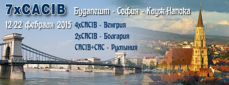 7xCACIB — Венгрия-Болгария (Sofia) — Румыния (Cluj-Napoca) / ShowLeader (Шоулидер) - поездки с собаками на выставки