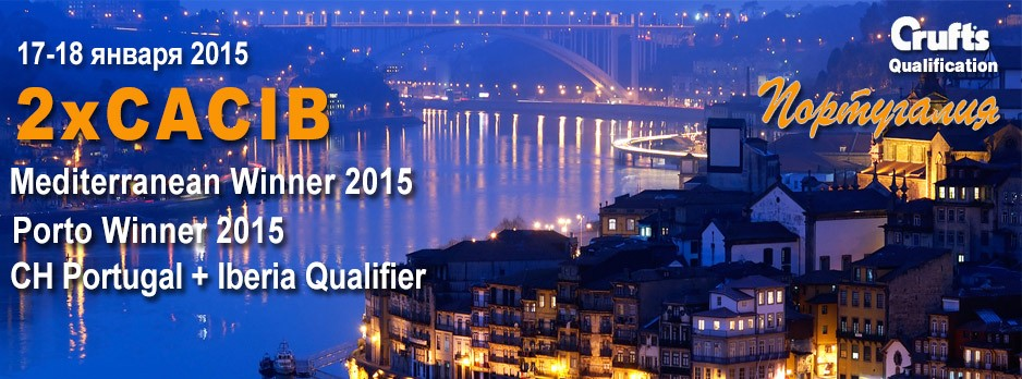 ShowLeader (Шоулидер)-Португалия -2CACIB