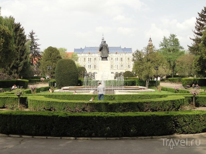 Поездки ShowLeader |Румыния, Сату-Маре