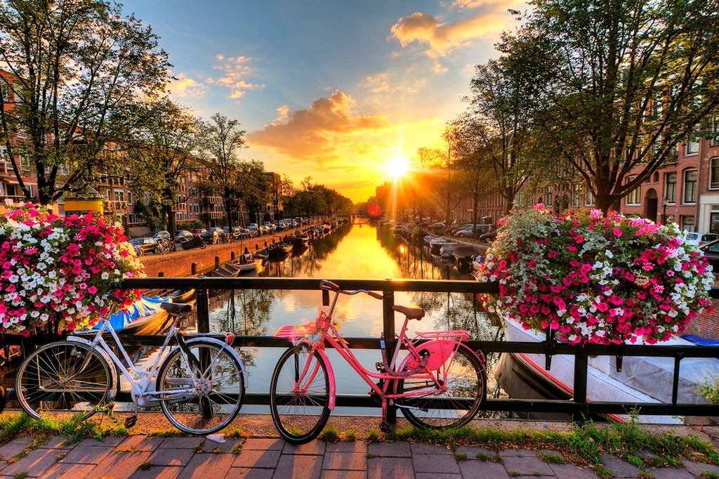 Поездки ShowLeader | Амстердам, Нидерланды