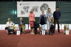 Балканский тур, июль 2018 (Румыния - Болгария - Босния и Герцеговина)