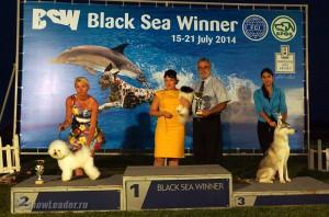 Black Sea Winner Балчик (Болгария) 15-16 июля 2014