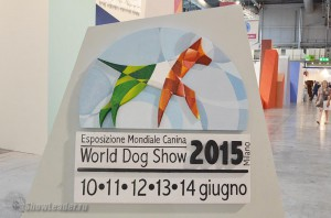 World Dog Show 2015, Milan (Italy)