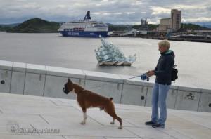 Euro Dog Show 2015, Осло (Норвегия)