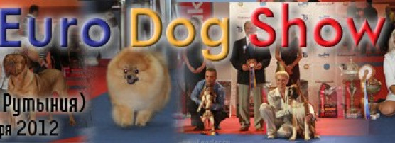 Euro Dog Show 2012 Bucharest (Romania)