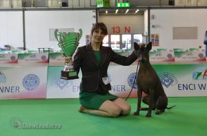 3xCACIB ENCI WINNER 16-18 июня 2017, Милан (Италия)