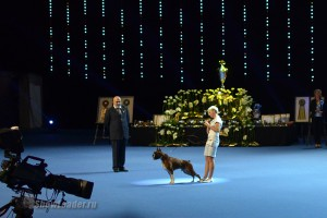 World Dog Show-2014 Хельсинки (Финляндия) 8-10 августа 2014