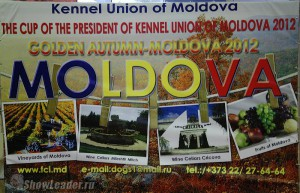 2xCACIB Молдова, 2xCAC Болгария, 2xCAC Грузия  13-14 октября 2012