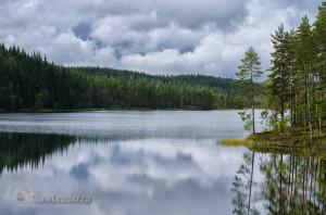 Дорога на EuroDogShow. Финляндия-Швеция-Норвегия и обратно